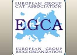 brief europa standard